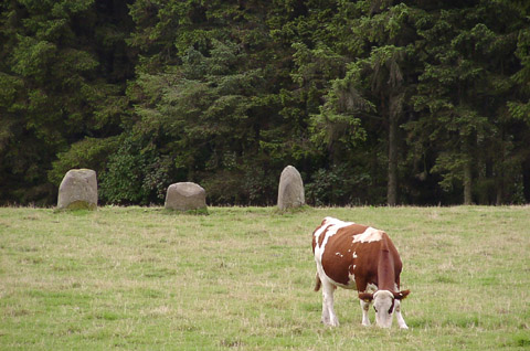 Fortingall S  Stone Circle, Perth and Kinross