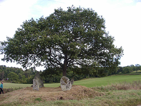 Lundin Farm  Stone Circle, Perth and Kinross