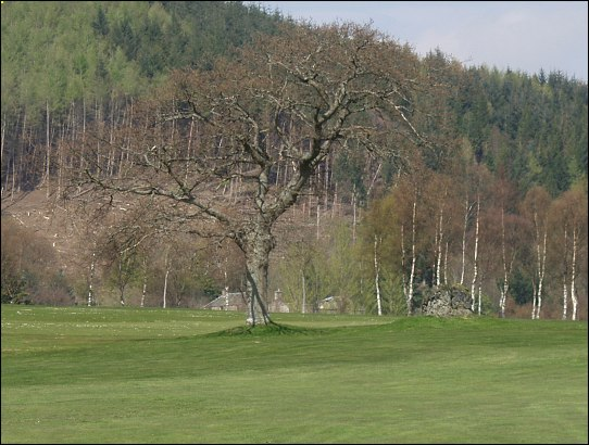Crieff Golf Club Standing Stone, Perthshire