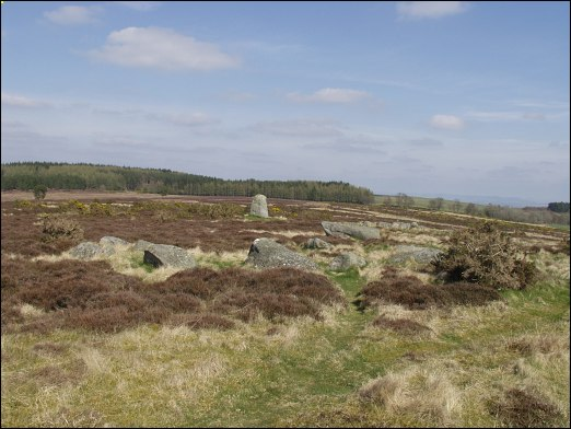 Fowlis Wester Stone Circle, Perthshire