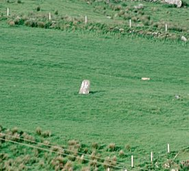 Cools Standing Stone, Kerry