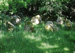 Lissyviggeen  Stone Circle, Kerry