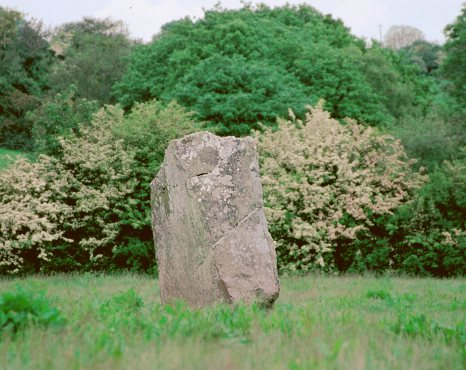 Inchinlinane Standing Stone, Cork