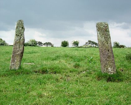 Kilmartin Lower Standing Stone, Cork